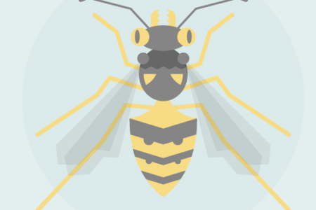 An Illustrated Guide To Beneficial Bugs In Your Garden Infographic