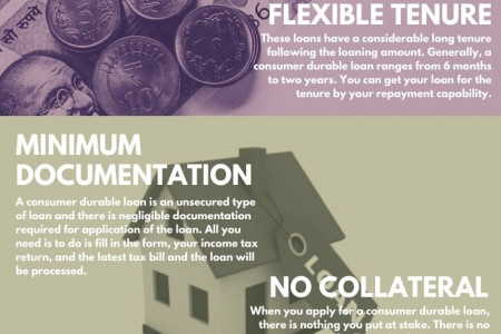 An Overview Of Consumer Durable Loans Infographic