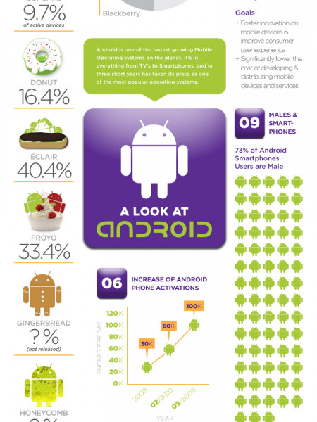 An Overview of Google Android  Infographic