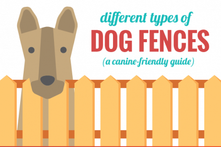 An Owner's Guide to Dog Fences [Infographic] Infographic