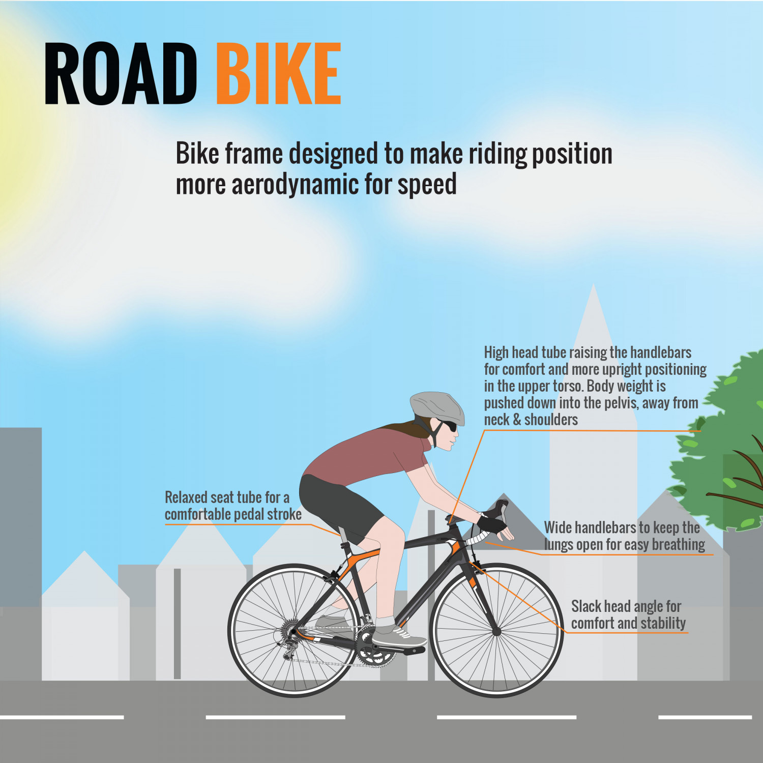 Anatomy of a Bicycle (Part II) - Road Bikes Infographic