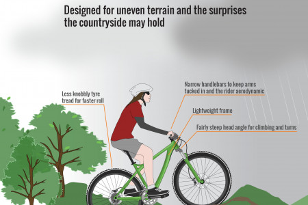 Anatomy of a Bicycle (Part IV) - Cross Country Infographic