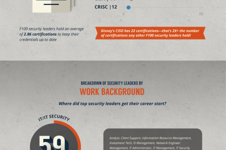 Anatomy Of A Fortune 100 CISO Infographic