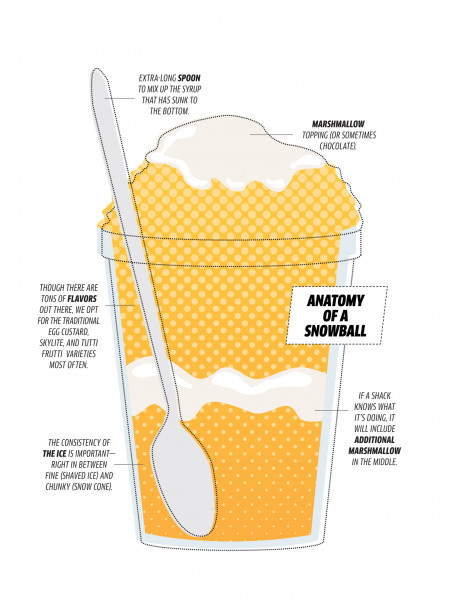 Anatomy of a Snowball Infographic