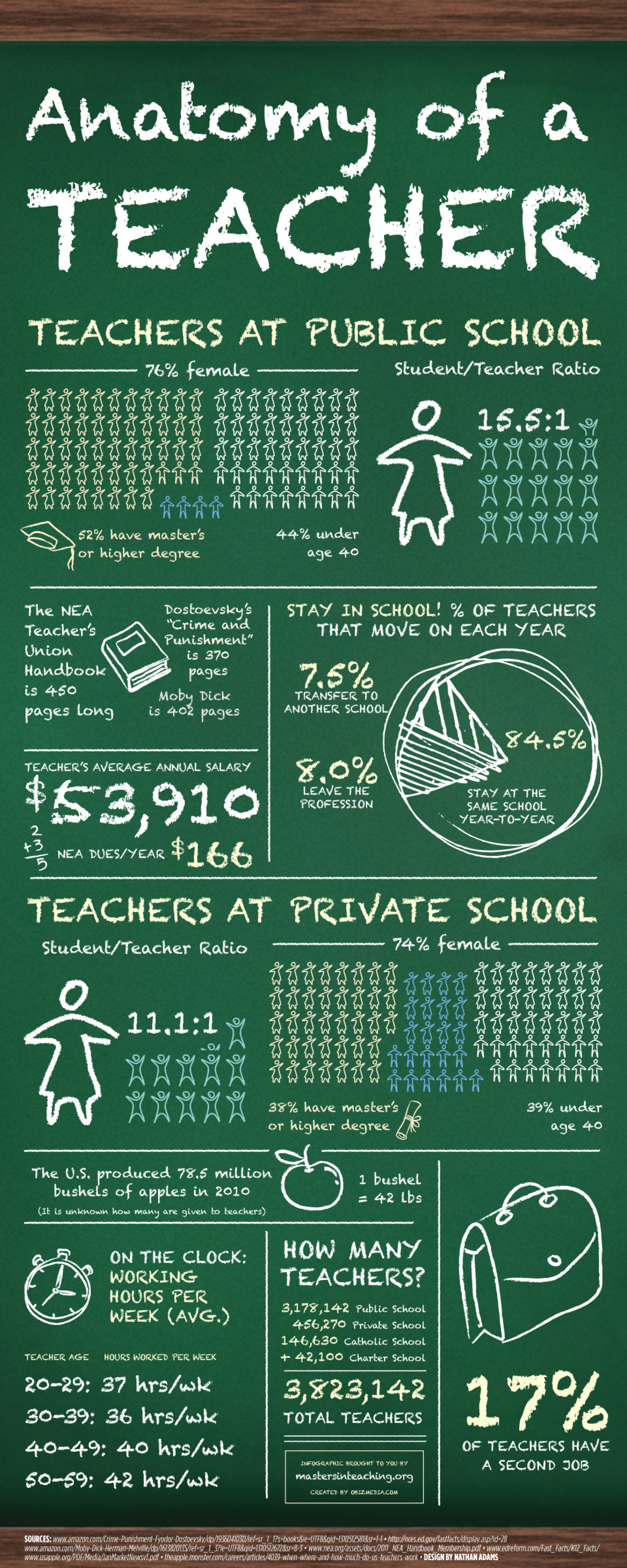 Anatomy Of a Teacher Infographic