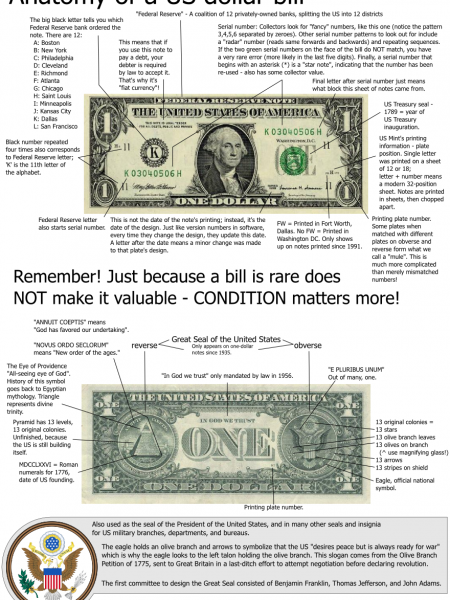 Anatomy of a U.S Dollar Bill  Infographic