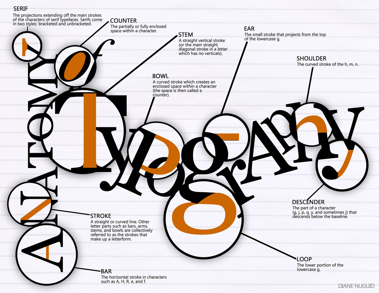 Typography / Fonts Info - Lessons - Tes Teach