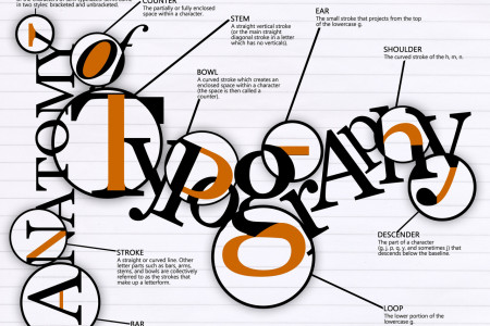 Anatomy of Typography Infographic