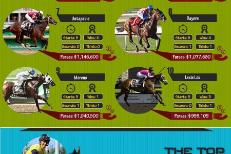 'And they're off! The world of Horse Racing in 2014'[Infographic] Infographic