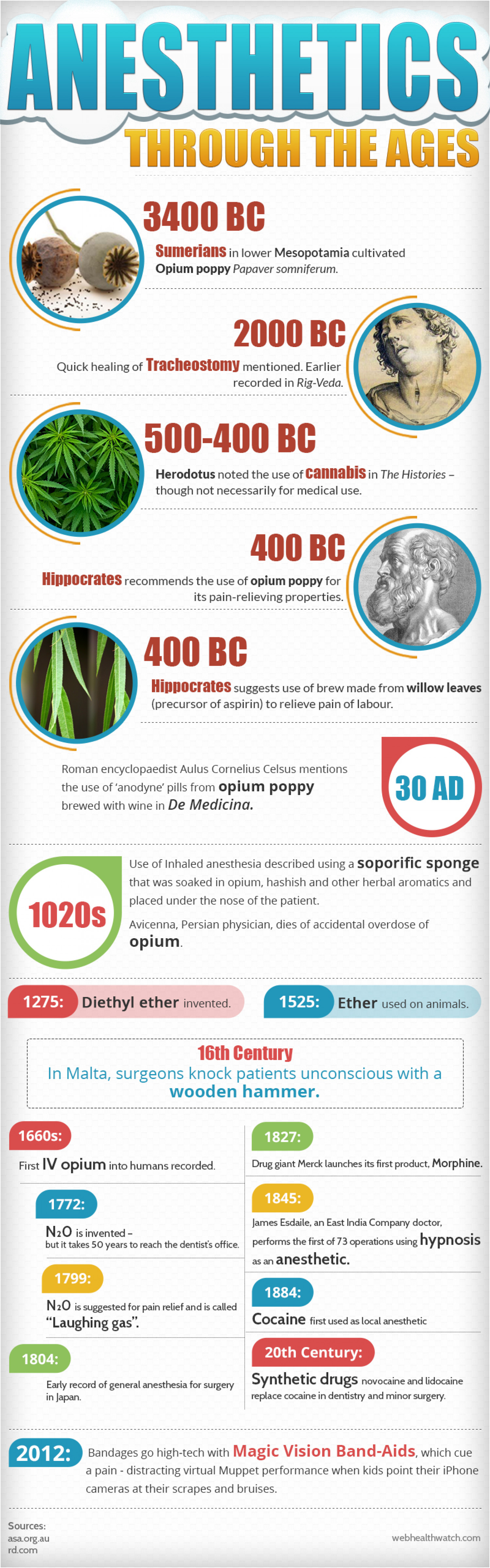 Anesthetics Through the Ages Infographic