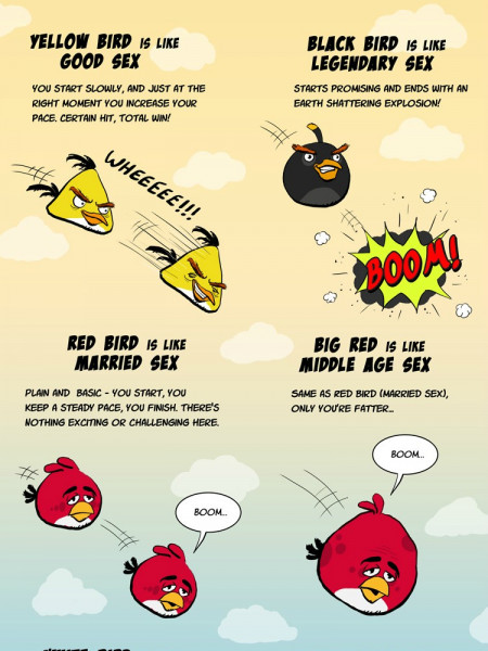 Angry Birds Are Like Your Sex Life  Infographic