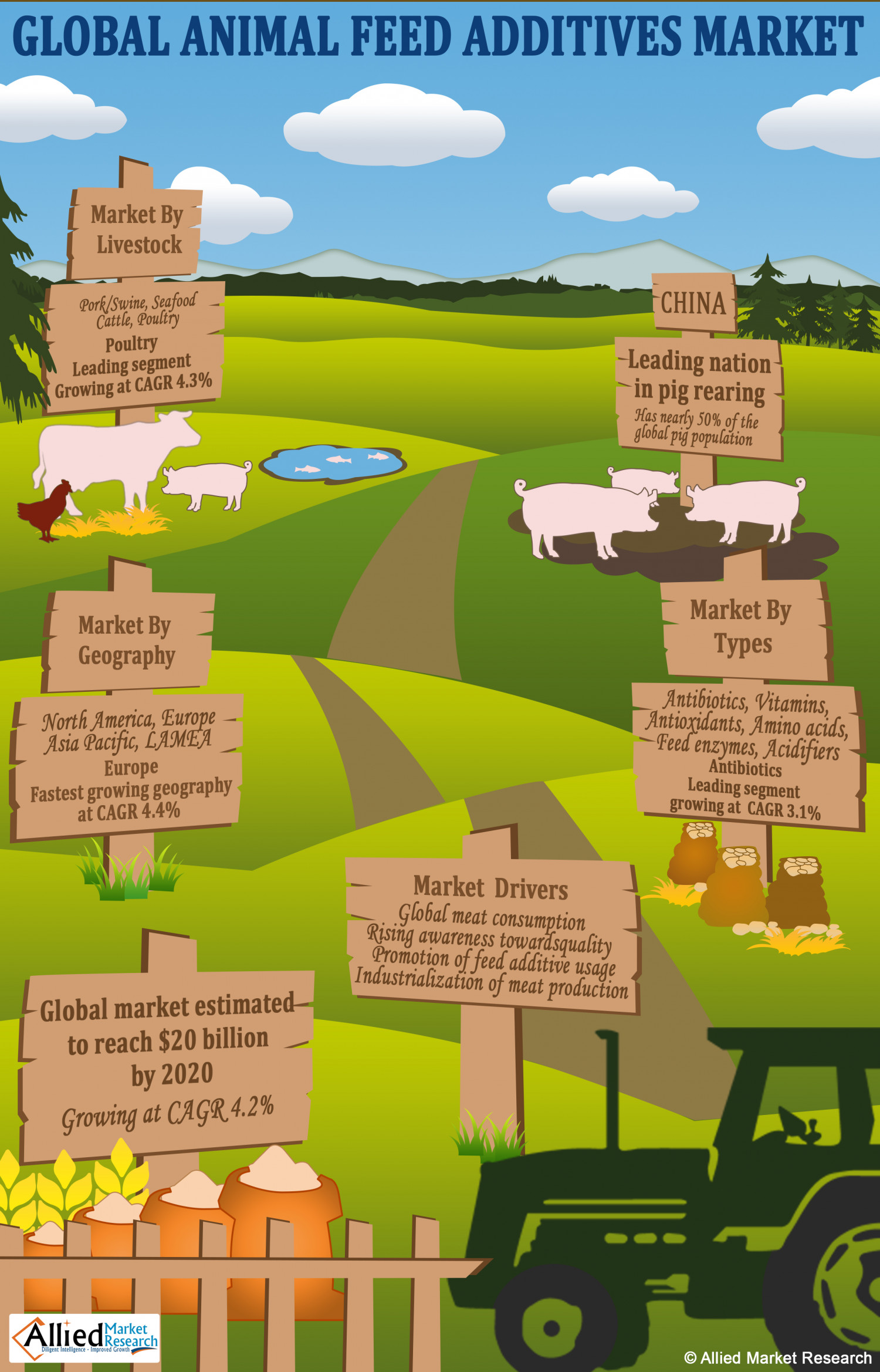 Animal Feed Additives Market Infographic