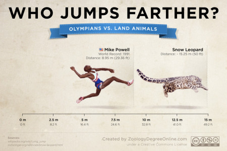 Animals Vs Olympians - Who Jumps Farther? Infographic