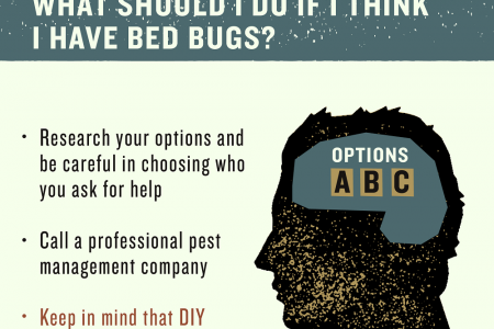 Answers to Your Questions About Bed Bugs Infographic