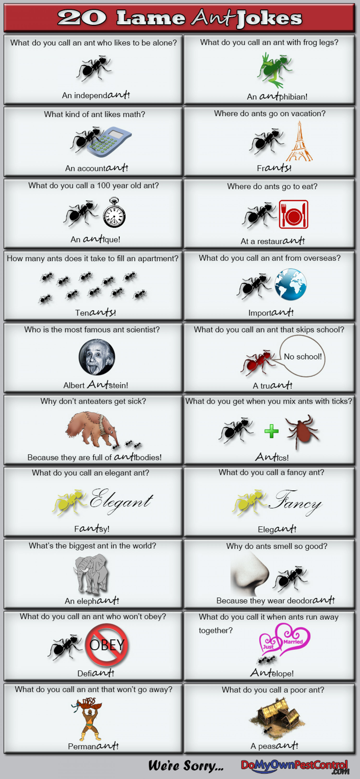 20 Lame Ant Jokes Infographic