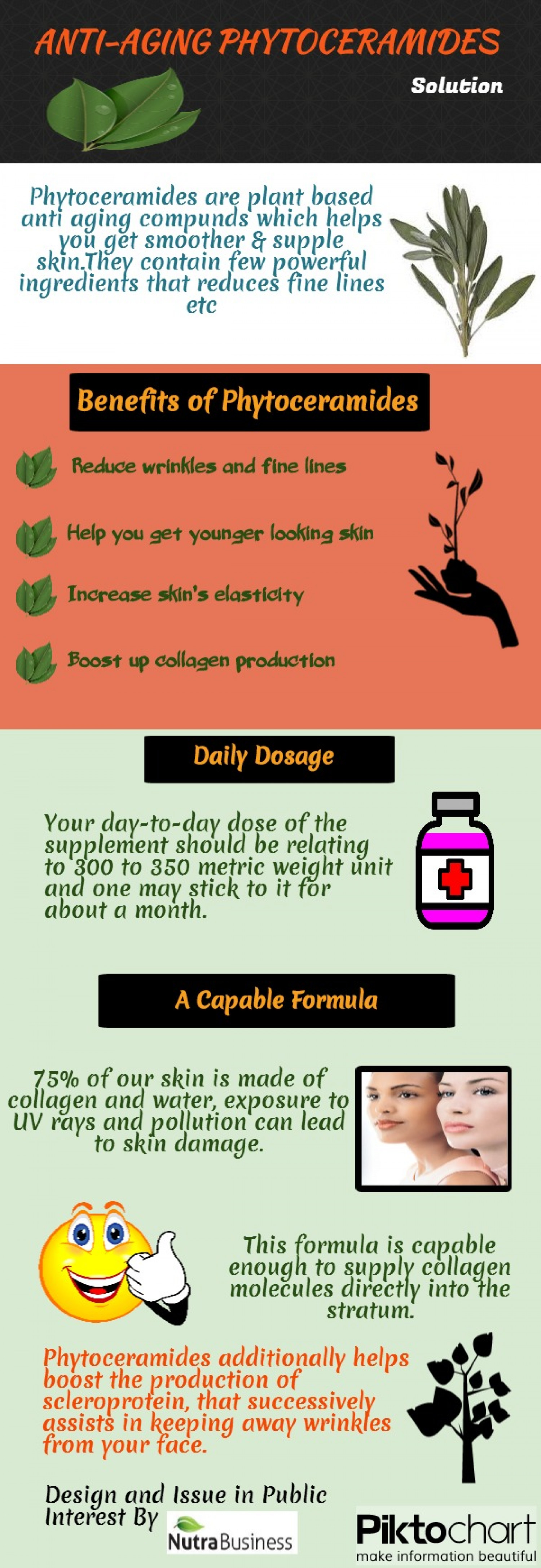 ANTI-AGING PHYTOCERAMIDE SOLUTION Infographic