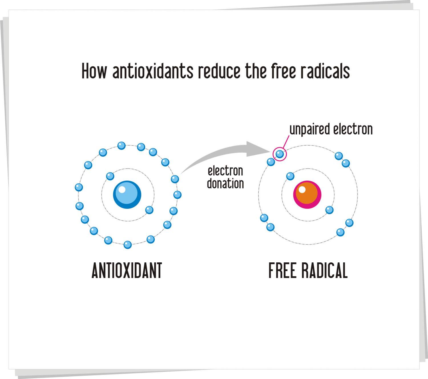 Antioxidants- Lifelines of the Body Infographic
