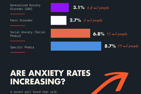 Anxiety Statistics US and Worldwide Infographic
