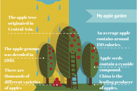 Apple Gardening Infographic Infographic