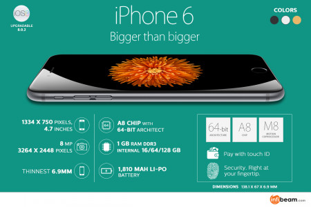 Apple iphone 6 - Explore the Unlimited Features & Have a Gorgeous Experience Infographic