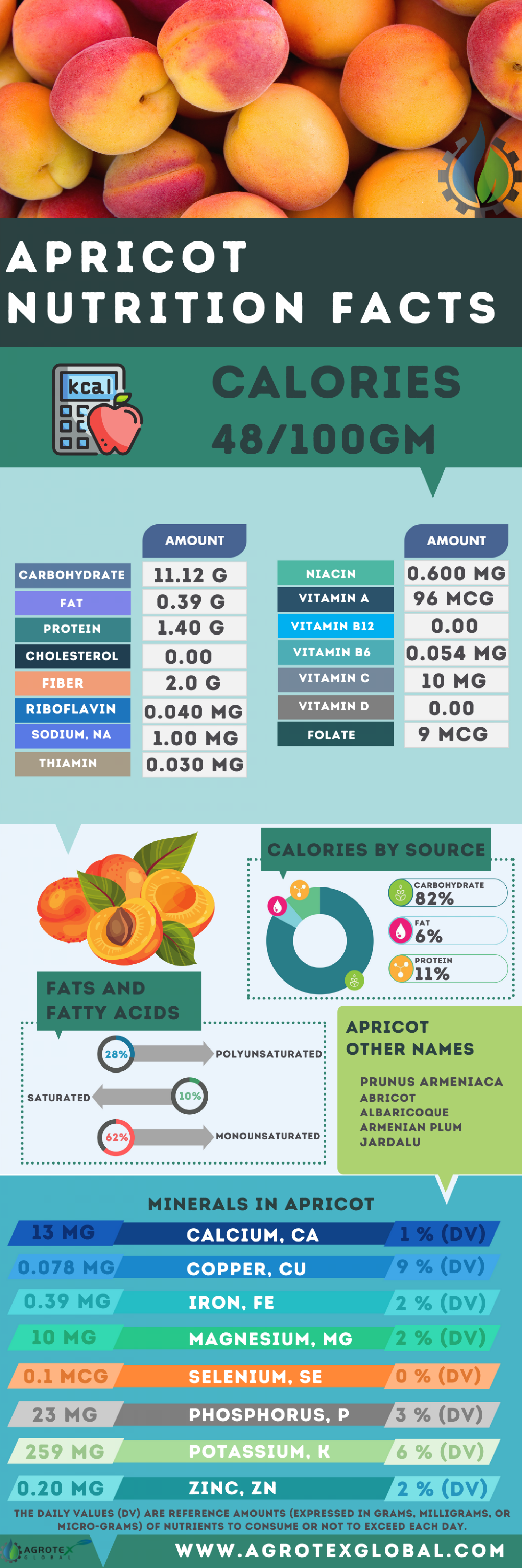 Apricot Fruit nutrition facts Infographic