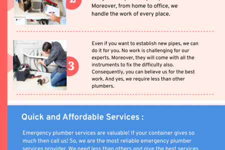 Are You Finding an Affordable Emergency Plumber in Florida? Infographic