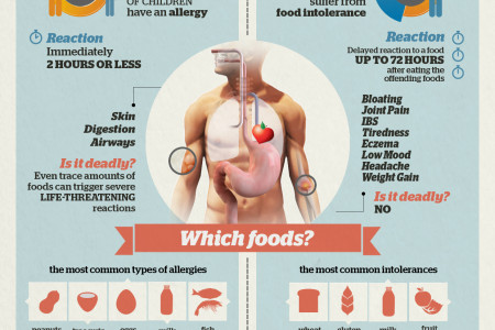 Are You Food Intolerant Or Allergic? Infographic