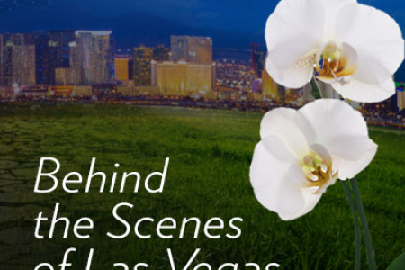 ARIA RESORT IN LAS VEGAS: LEED-CERTIFIED AND SUSTAINABLE Infographic