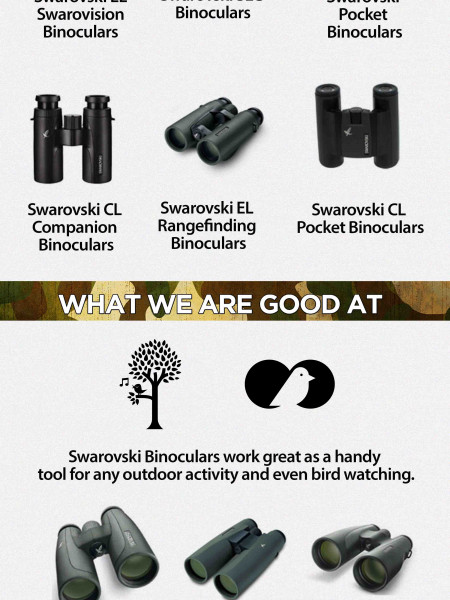 Array Of Swarovski Binoculars – Infographic Infographic