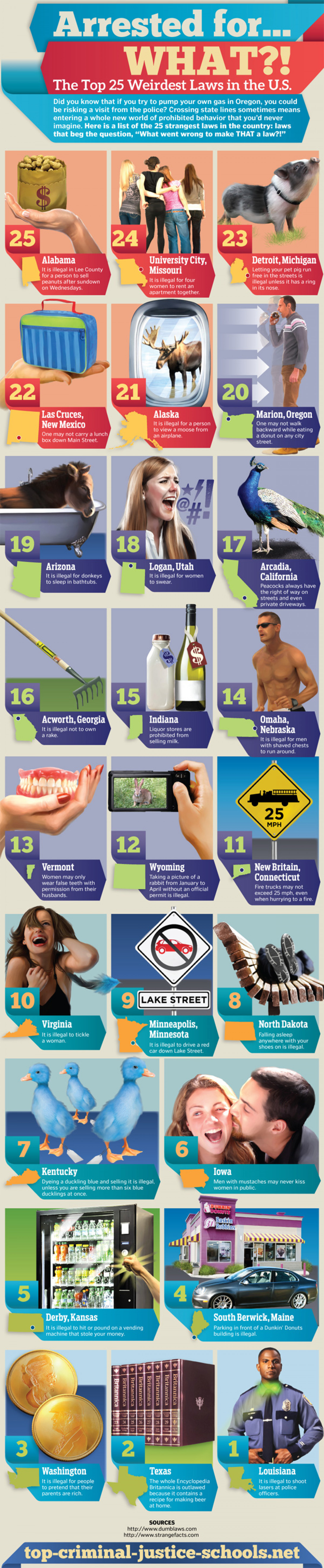 Arrested for What? The Top 25 Weirdest Laws in the U.S. Infographic