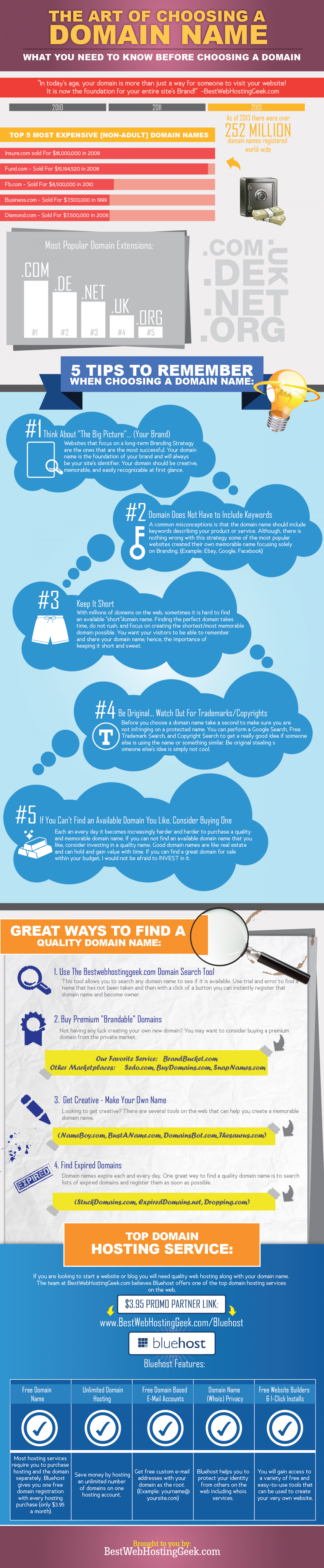 Art of Choosing a Domain Name Infographic