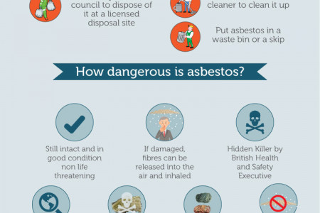 Asbestos facts Infographic
