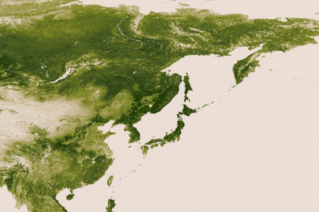 Vegetation in Asia Infographic