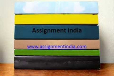 Assignment India Infographic