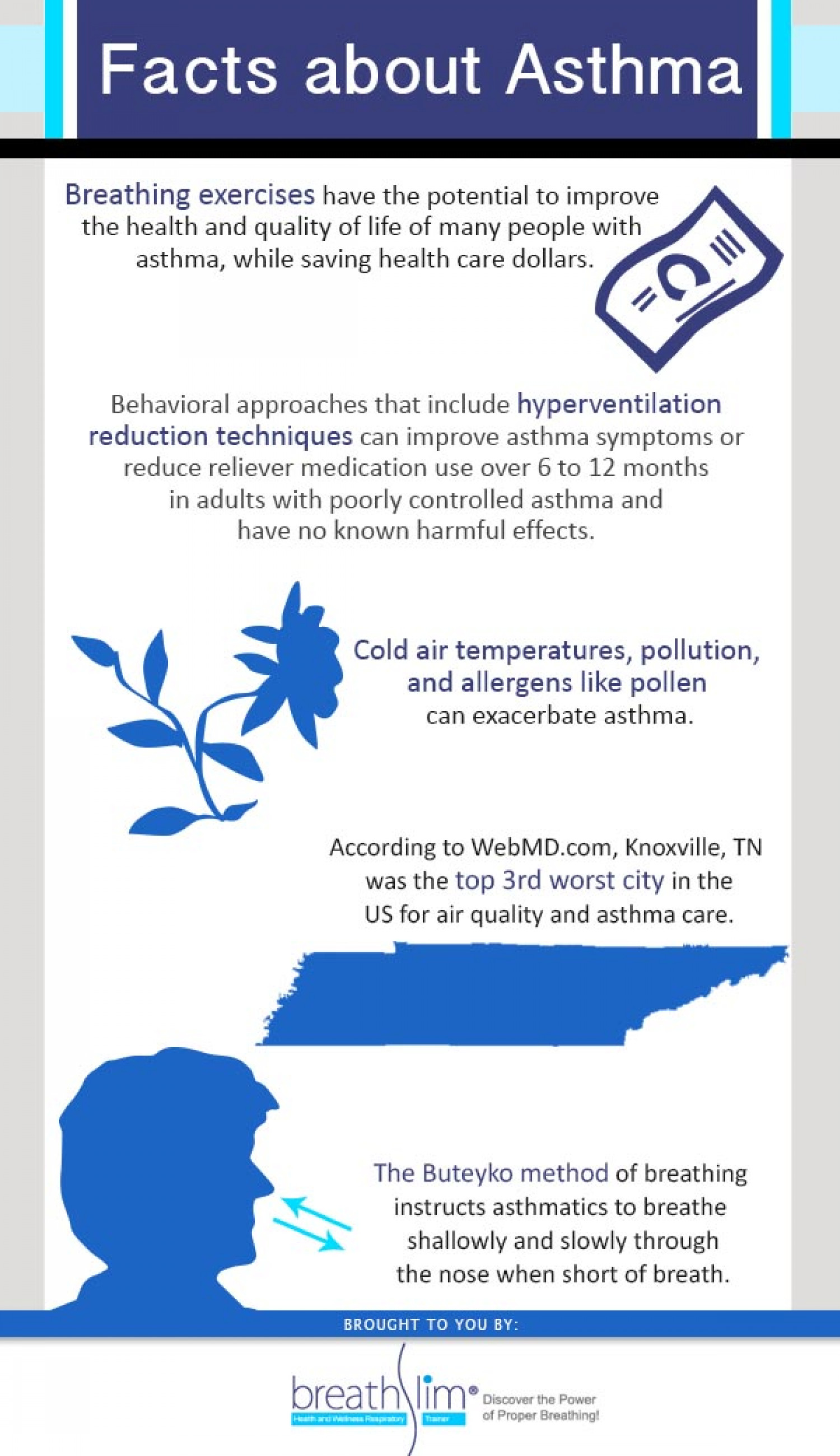 Asthma Facts Infographic