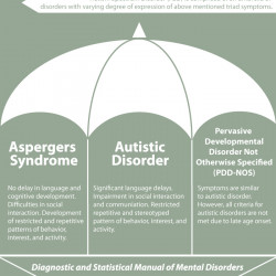 Autism Thesis Paper