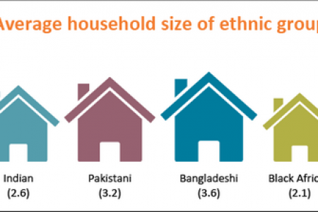 Average Household Size of Ethnic Groups Infographic