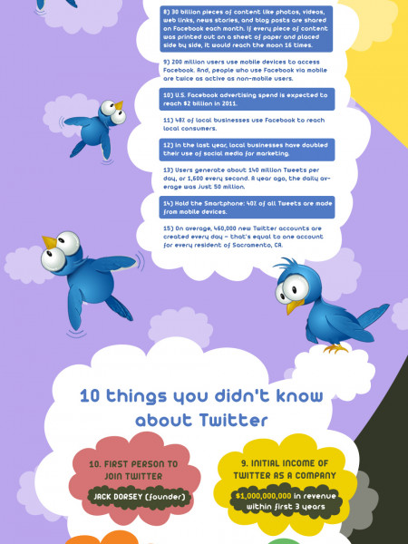Awesome Twitter Facts & Stats Infographic