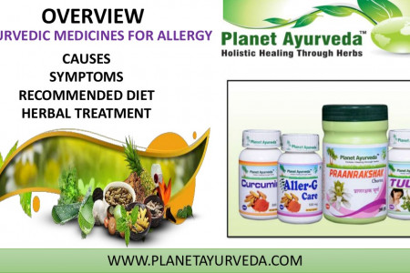 Ayurvedic Medicine for Allergy | Natural Herbs & Diet Infographic