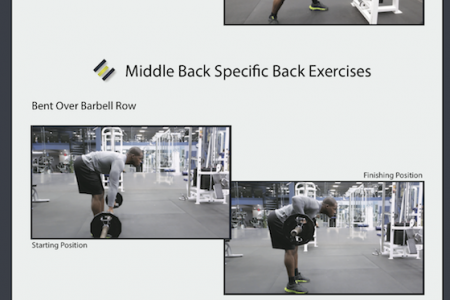 Back Exercises Infographic