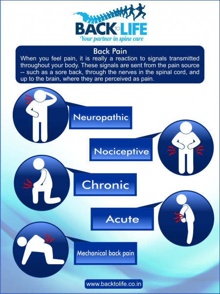 Back to life Infographic