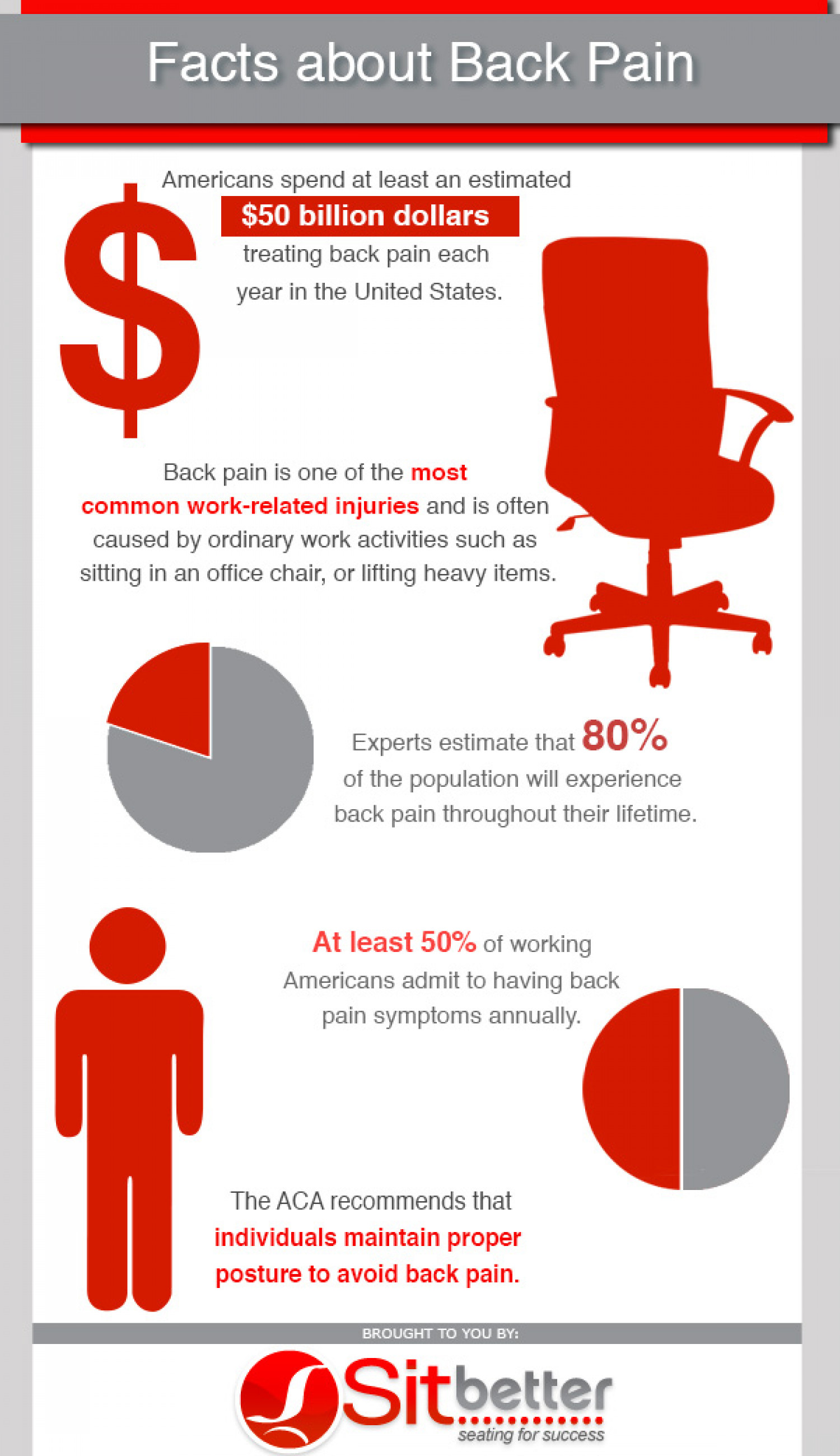 Facts About Back Pain Infographic