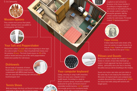 Bacteria Lives There? Infographic