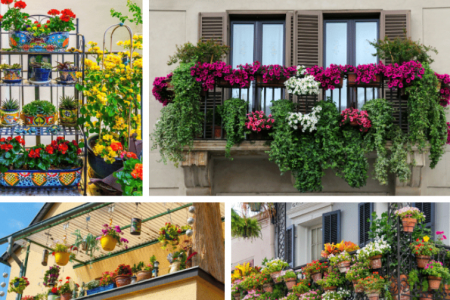 Balcony Garden Ideas and Tips for Your Home Infographic