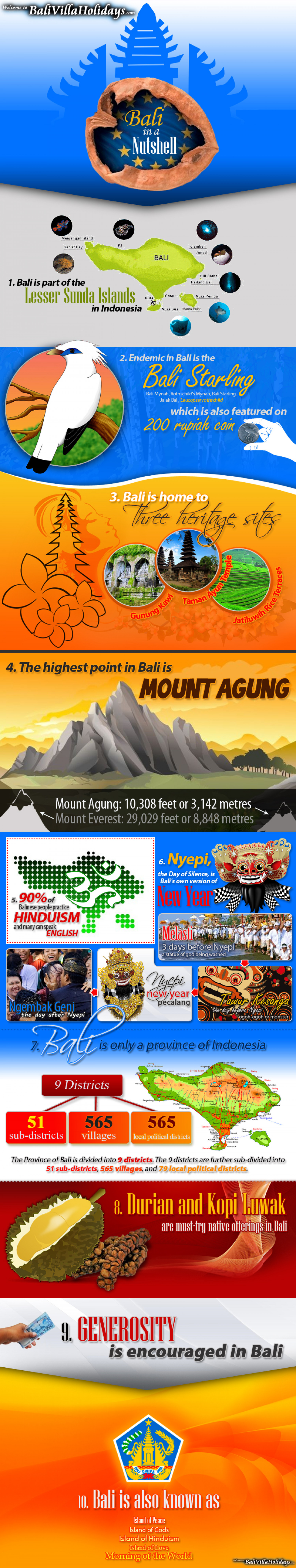 Bali in a Nutshell Infographic