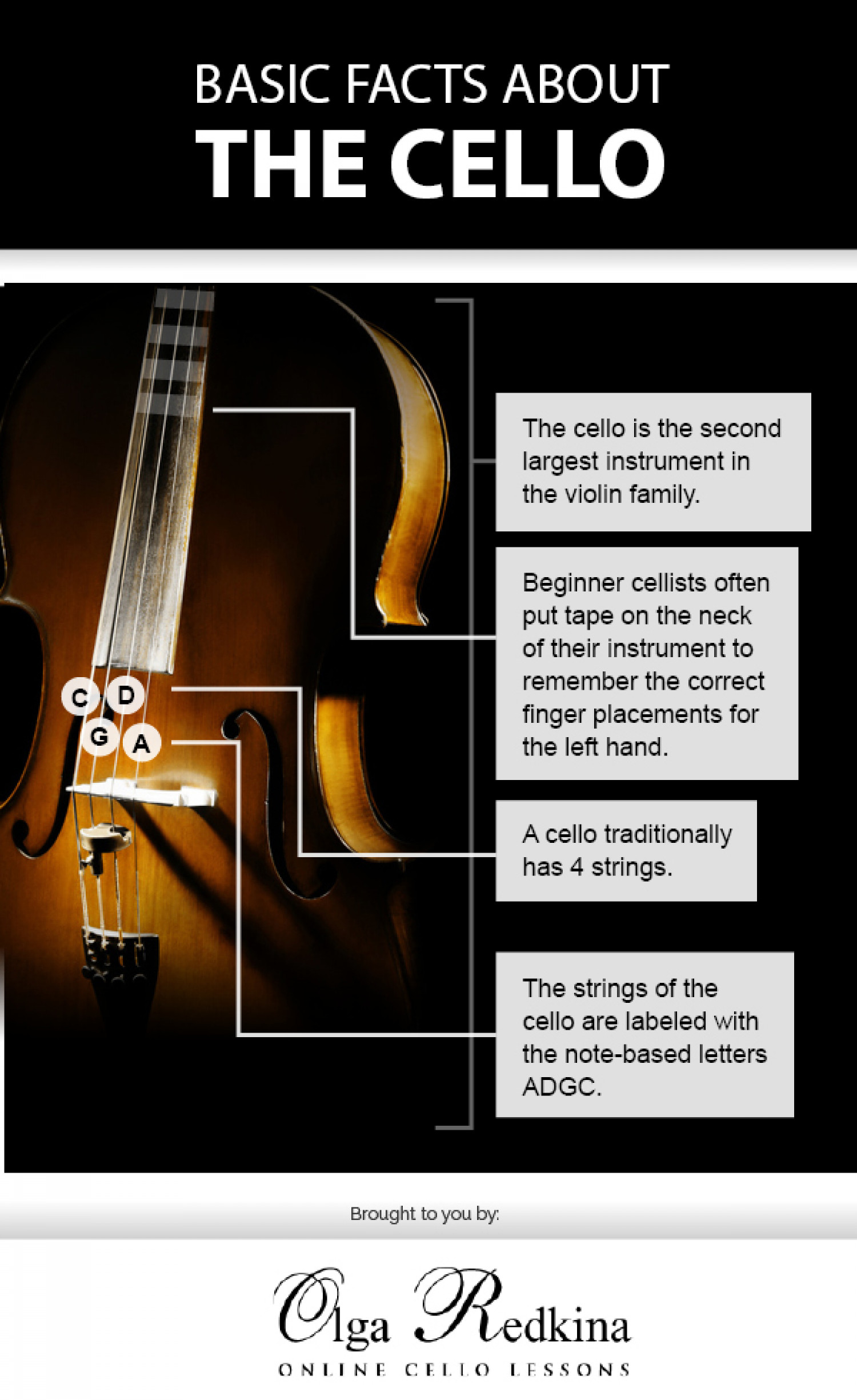 Basic Facts About the Cello Infographic