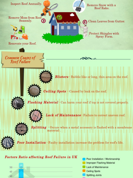 Basic Footsteps to Make Your Roof Better Infographic