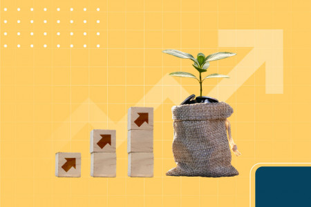 Basics of mutual funds Infographic