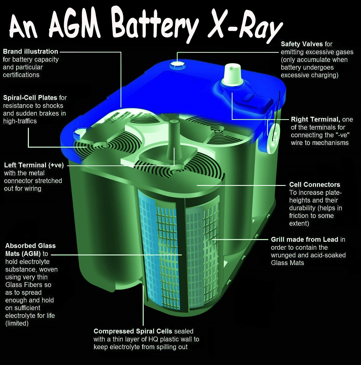 Battery X-Ray Infographic