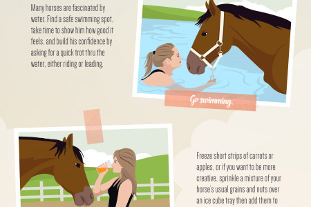 Beat the Heat - Keeping Your Horse Cool This Summer Infographic